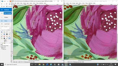 flowers50smaller.jpg